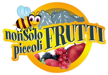 logo Non solo piccoli frutti