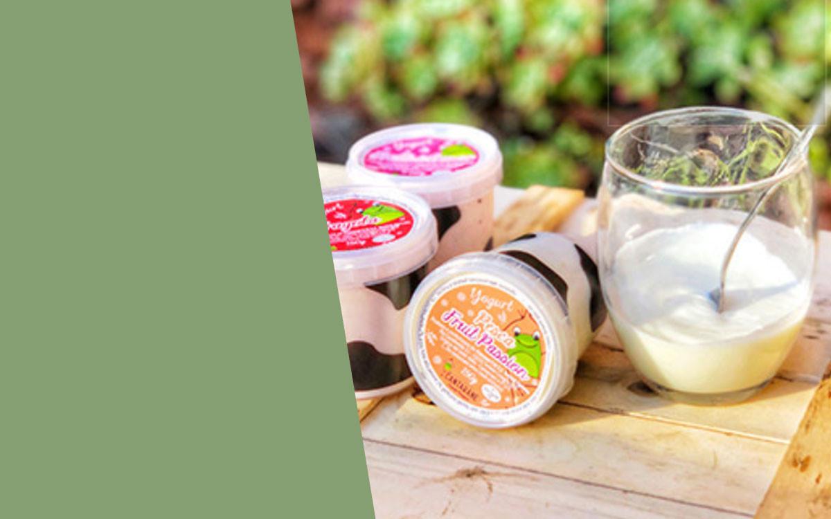 Mini Yogurt